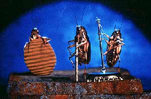 Earth Logo